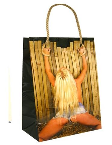 GIRL ON THE FENCE GIFT BAG