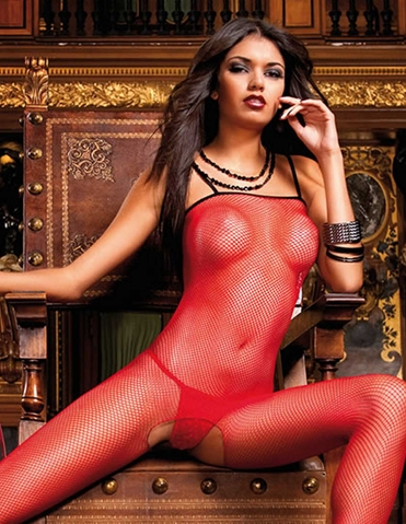 MESH NET BODYSTOCKING